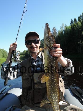 отчеты о рыбалке река озерна