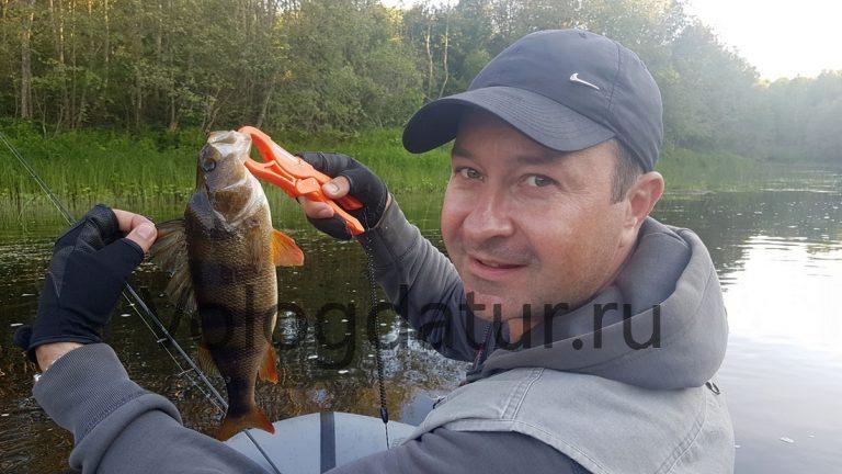 рыбалка крупного окуня на водохранилище
