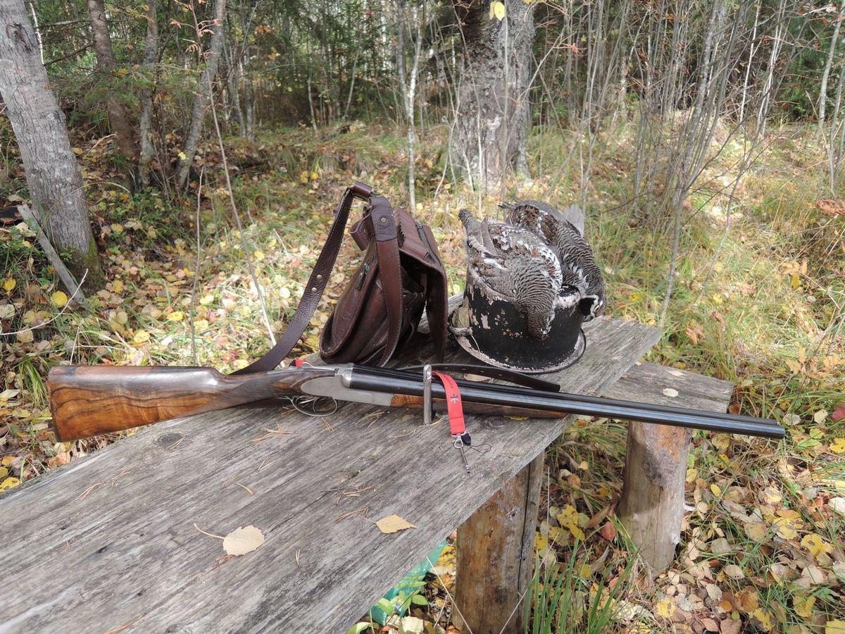 Охота на рябчика с манком осенью - тактика, погода, советы и наблюдения
