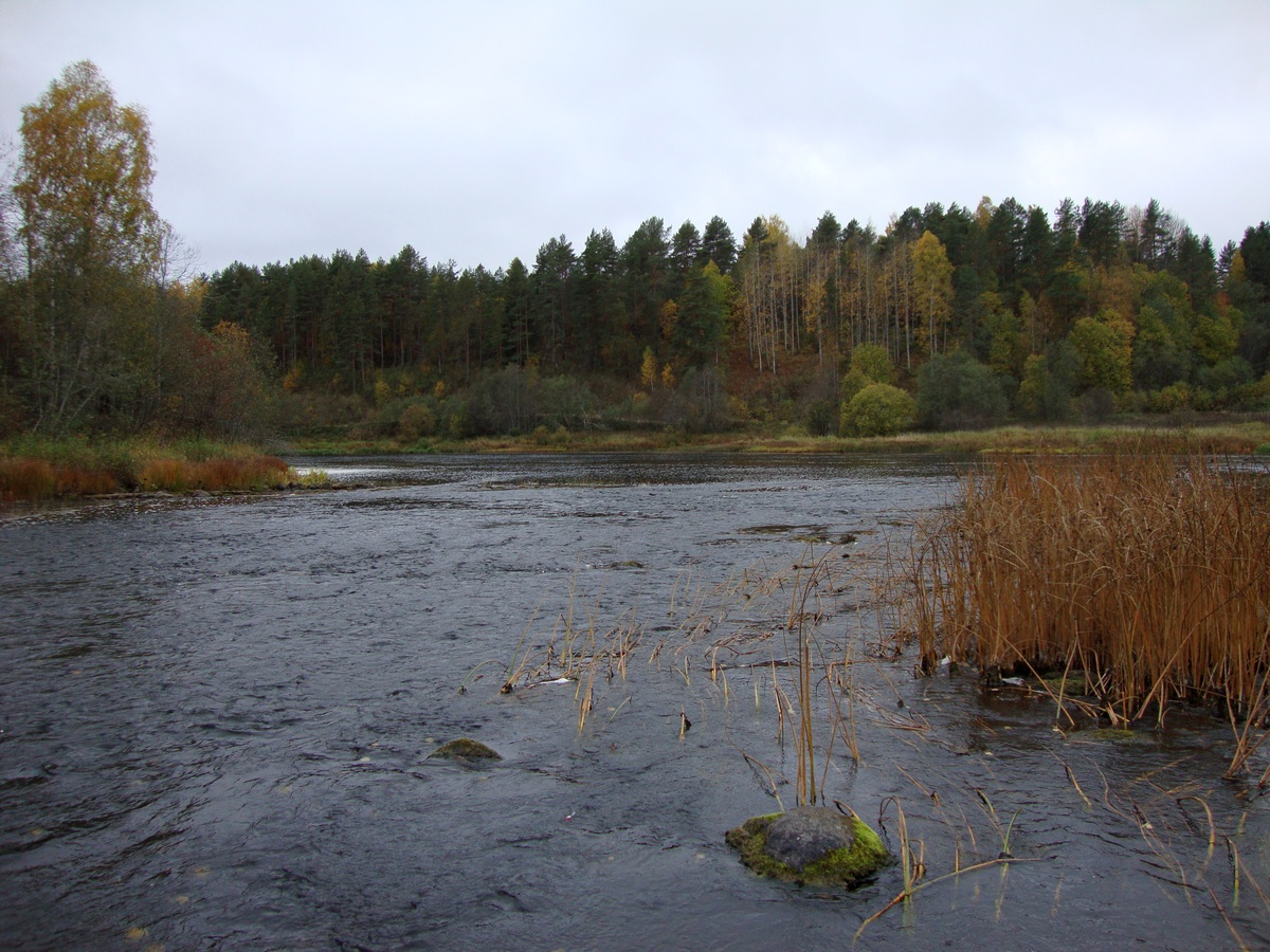 Устье Индоманки в Октябре