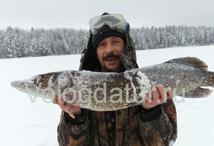 Новые правила любительского рыболовства 2019 в московской области новые фото