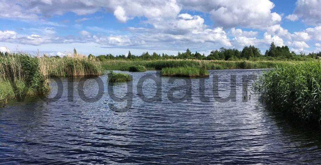 Ковжский разлив на озере Белое Вологодской области