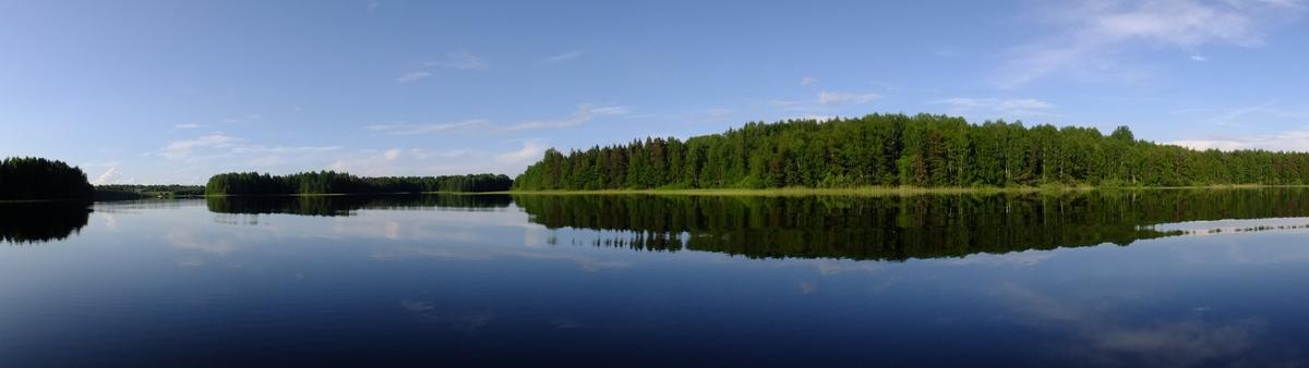 Панорама озера Боровское