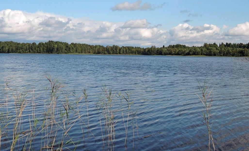 Святозеро в Вологодской области