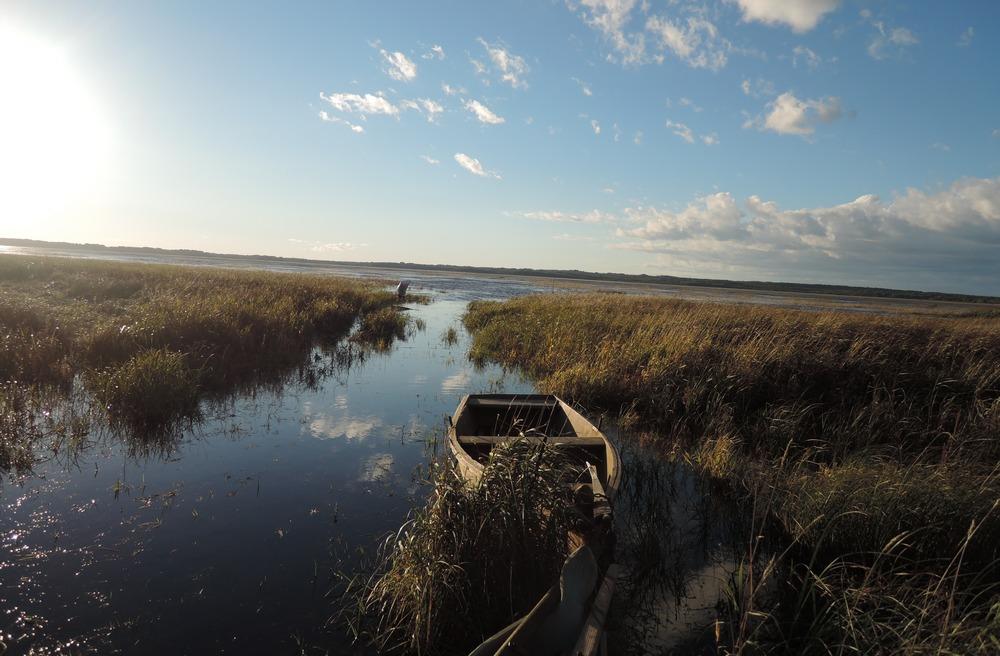 Весенняя охота на селезня в Вологодской области